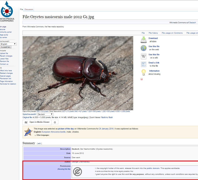 Genauere Informationen über einzelne Bilder bei Wikimedia Commons - insbesondere über die Nutzungsrechte (roter Kasten)